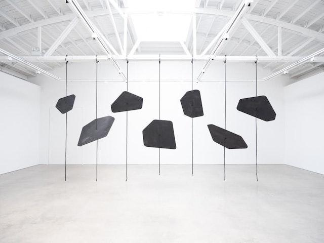 Installation view of Elliot Bergman, <em>Resonant Body</em> at Shane Campbell Gallery